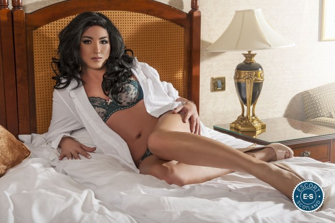 Thiffany TV is a top quality Spanish Escort in