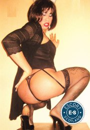 Meet the beautiful Karen Brazilian TS in   with just one phone call