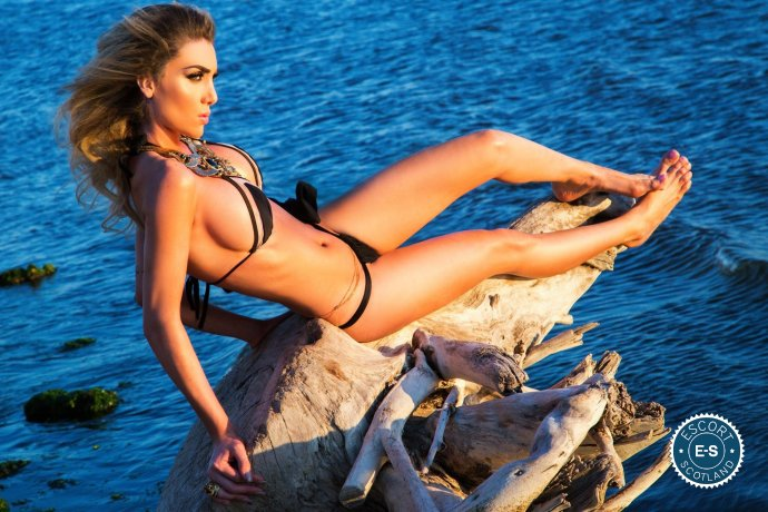 Elle TS  is a hot and horny Italian escort from Glasgow City Centre, Glasgow