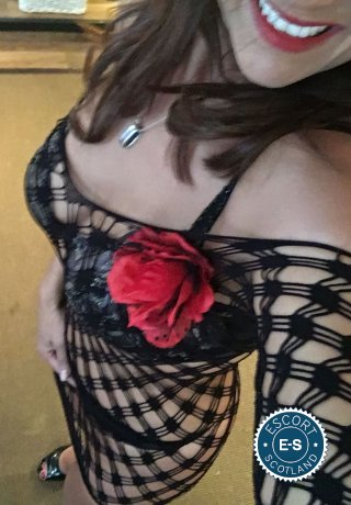 Meet the beautiful Laura Mature in Falkirk Town  with just one phone call