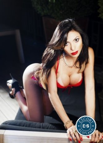 Meet the beautiful TS Michelly Araujo in Edinburgh  with just one phone call